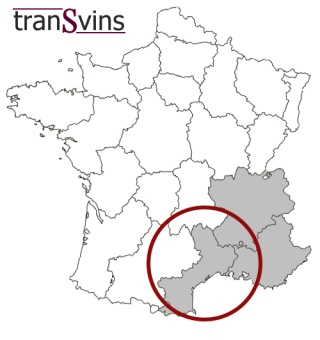 We offer wines of southern France, usually from Lanquedoc Roussillon, Rhone Valley and Provence